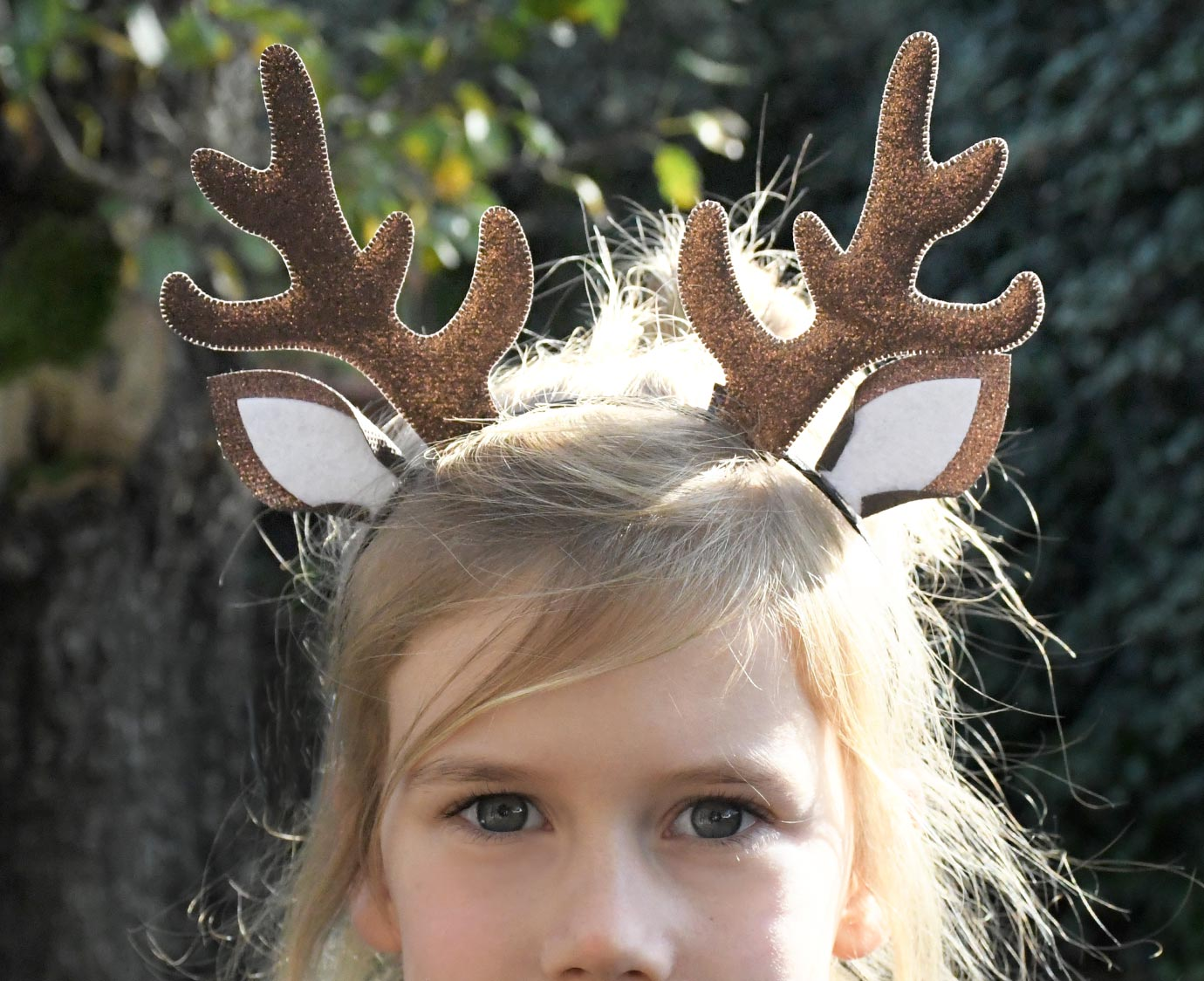 Diadeem 'Winter Deer' 1