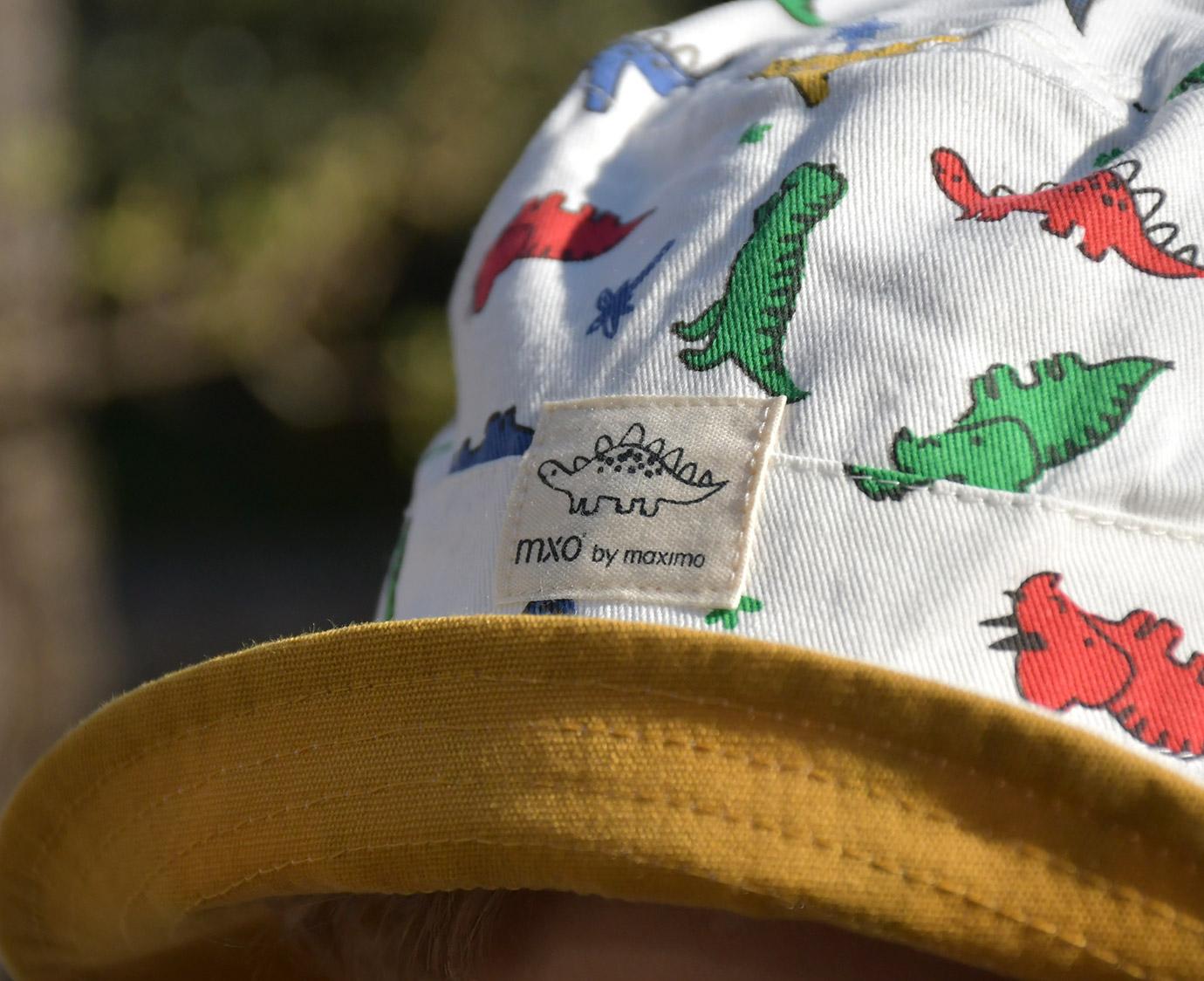 Zonnehoedje 'Dino Bucket'